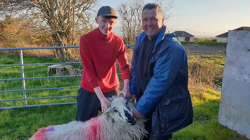 John and Tadghe Evans - 8th generation sheep farmers in the Dingle Penninsula