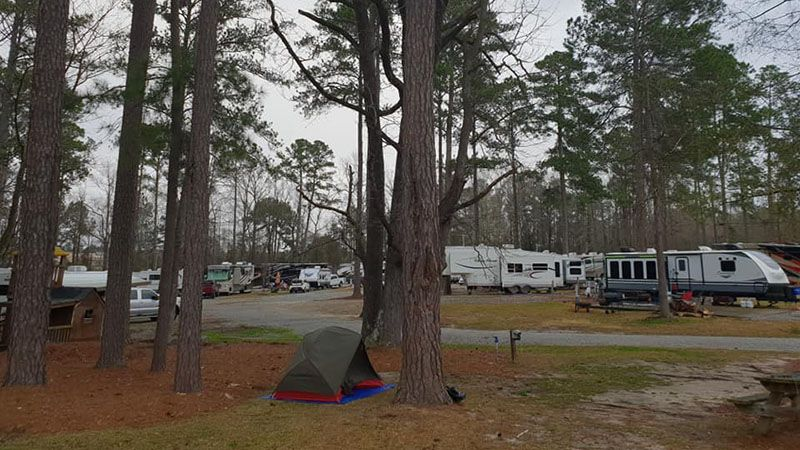 The only tent at soggy but beautiful Lake Pines Camp and RV Park near Columbus