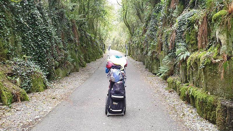 Koko in a jungly section of the Green Way, a traffic free dream path stretching 30 miles between Dungarvan and Waterford