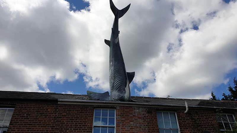 The famous Shark House in Oxford, a marvelously odd and eye catching landmark