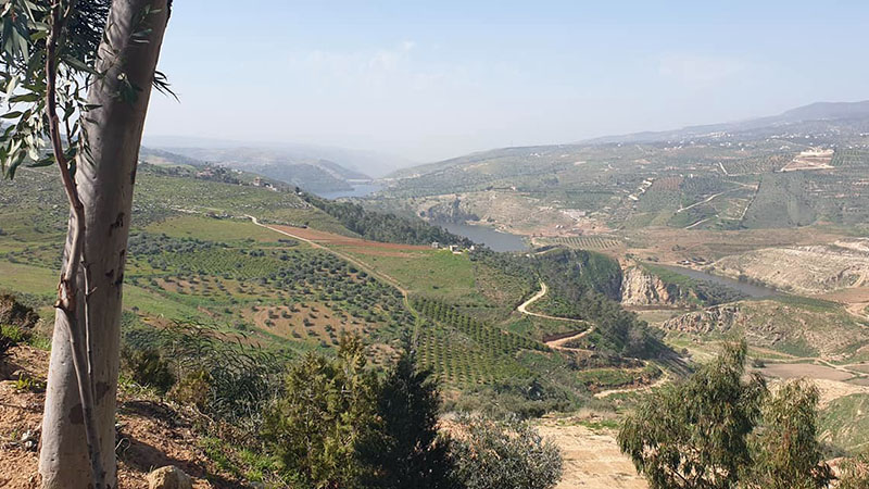 The hills between the ancient town of Jerash and the sprawling modern capital, Amman